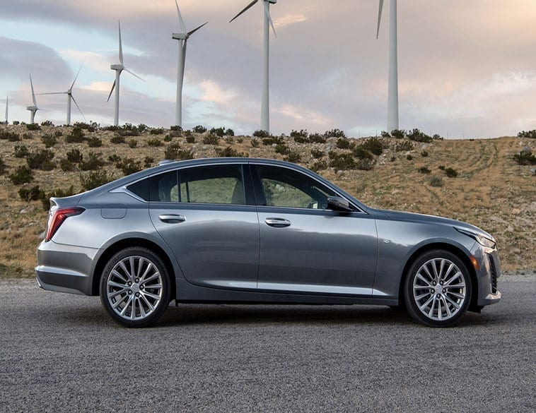 recognizes, Cadillac, car, platform, luxury, vehicle